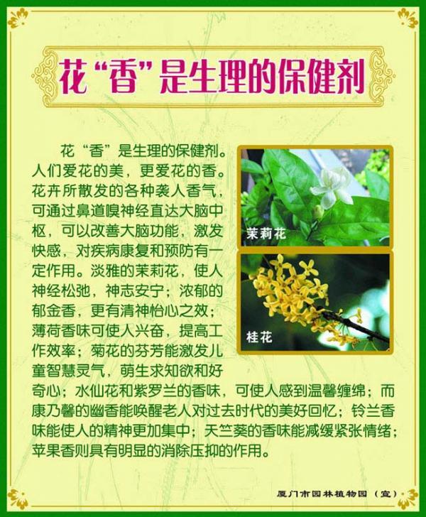 展板03-花香是生理的保健剂