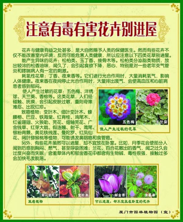 展板10-注意有毒花卉别进屋